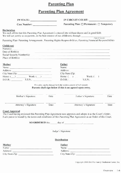 Free Custody Agreement Template Inspirational A Child Custody Agreement Template and Free Joint form