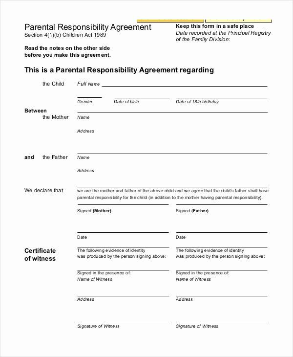 Free Custody Agreement Template Lovely Parenting Agreement Templates 8 Free Pdf Documents