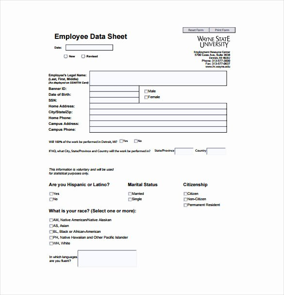 Free Data Sheet Template Unique 27 Data Sheet Templates Free Sample Example format