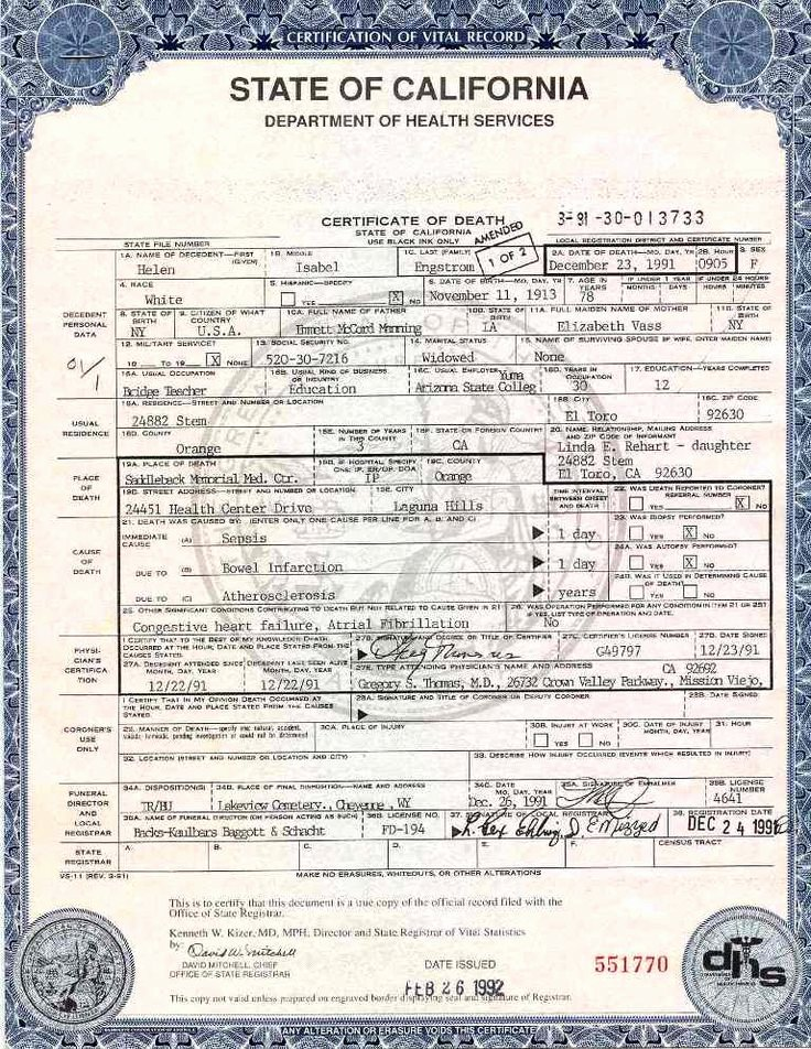 Free Death Certificate Template Best Of 299 Best Fake Documents Images On Pinterest
