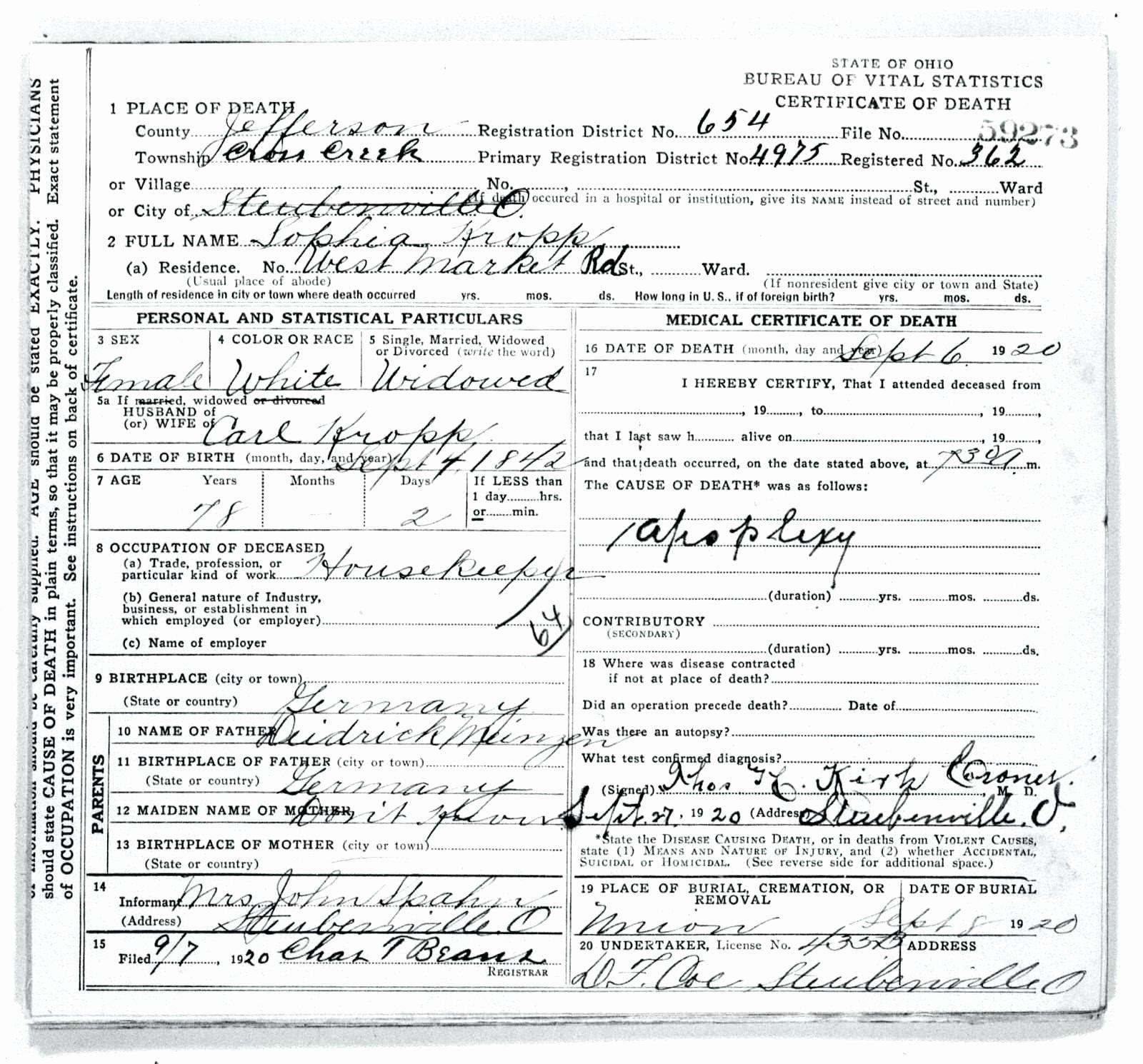 Free Death Certificate Template Unique Death Certificate Template Microsoft Word Template Fake
