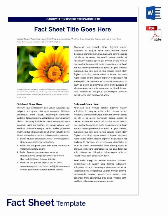 fact sheet template microsoft word