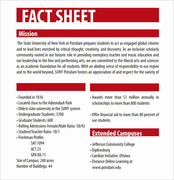 Free Fact Sheet Template Awesome Fact Sheet Template – 12 Download Documents In Pdf Word