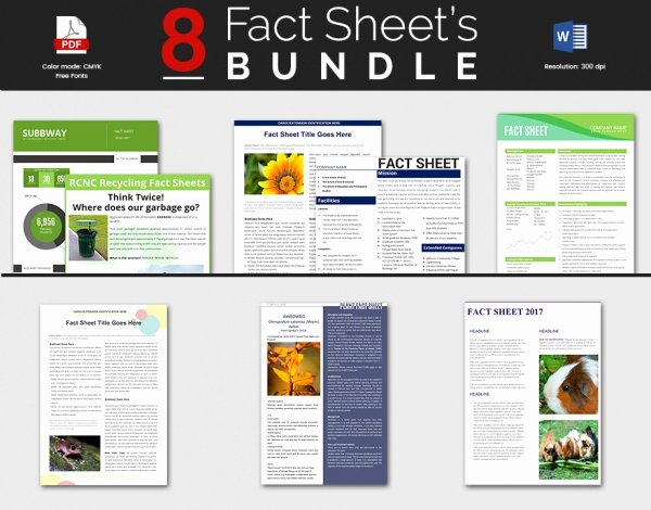 Free Fact Sheet Template Luxury Sample Fact Sheet Template 13 Free Download Documents