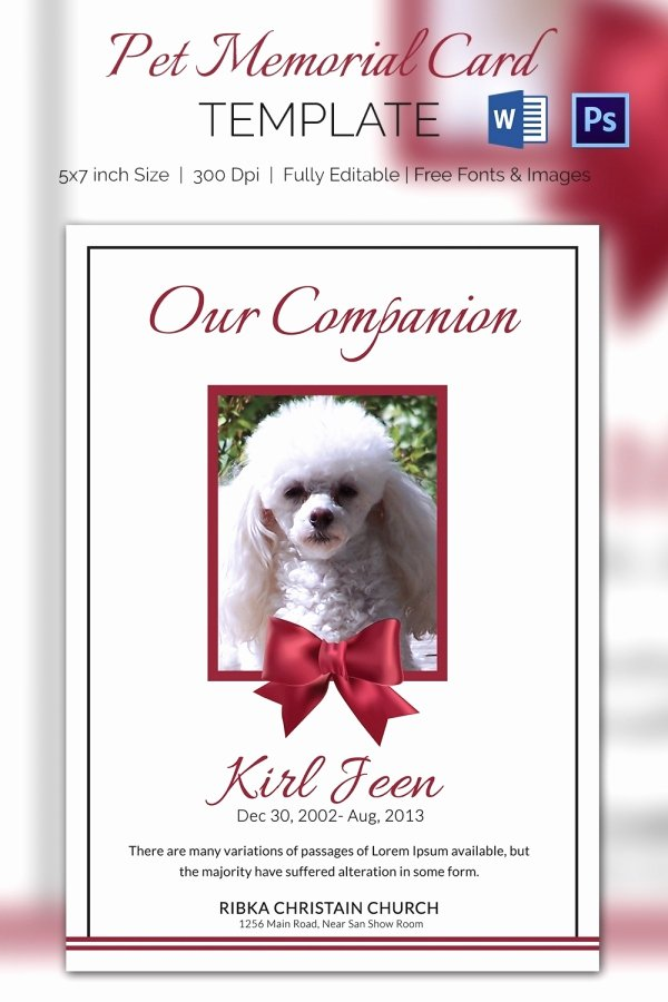 Free Memorial Card Template Lovely Pet Memorial Card 5 Word Psd format Download