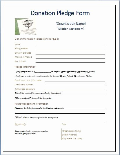 Free Pledge Card Template Best Of Sample Donation Pledge form