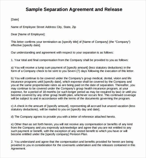 Free Separation Agreement Template Inspirational 6 Business Separation Agreements