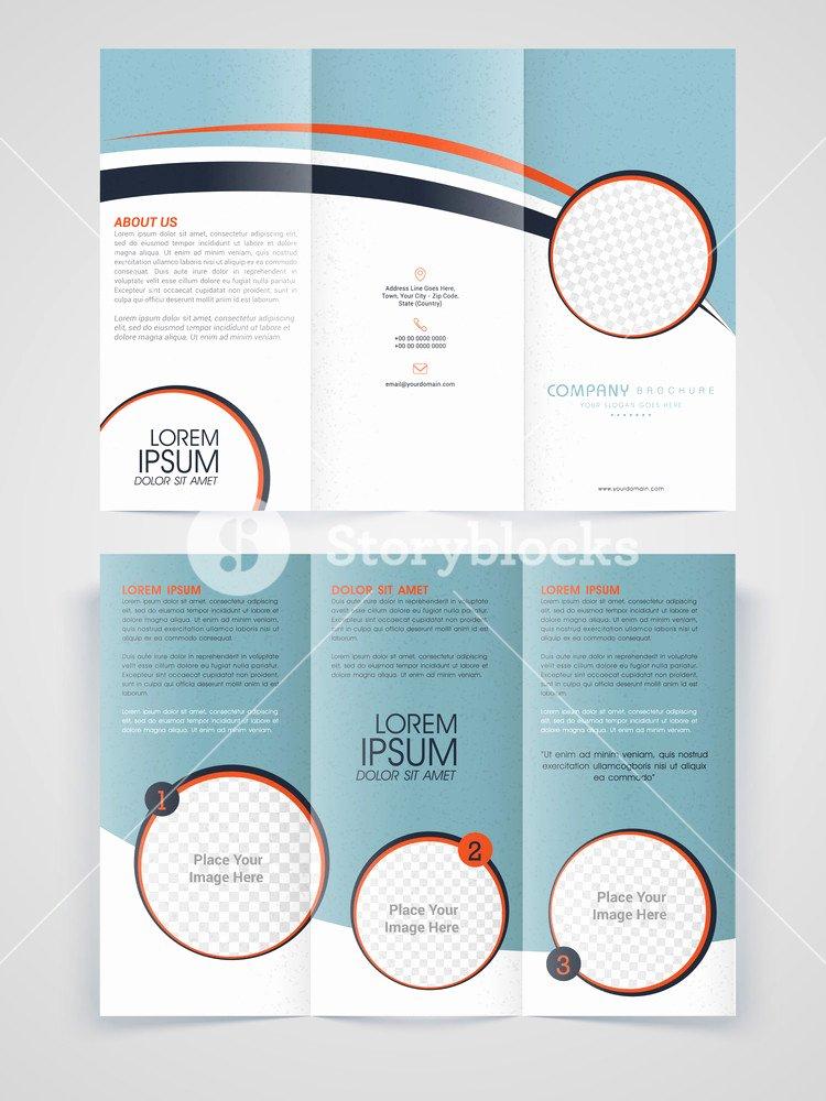 Free Tri Fold Template Inspirational Marketing Brochure Templates Free Professional Business