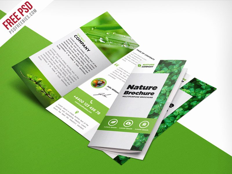 Free Trifold Brochure Template Best Of Nature Tri Fold Brochure Template Free Psd
