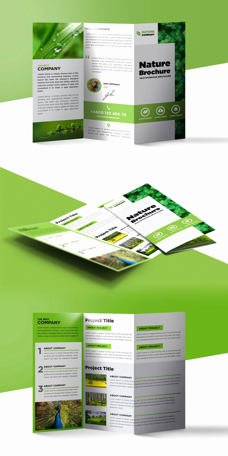 Free Trifold Brochure Template Fresh Nature Tri Fold Brochure Template Free Psd
