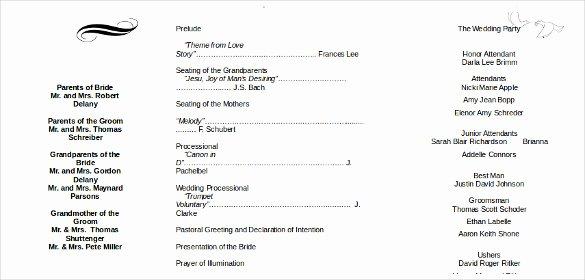 Free Wedding Itinerary Template Beautiful 26 Wedding Itinerary Templates – Free Sample Example
