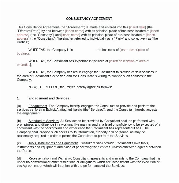 Freelance Retainer Contract Template Unique Marketing Contract Template Freelance Artist Example Free