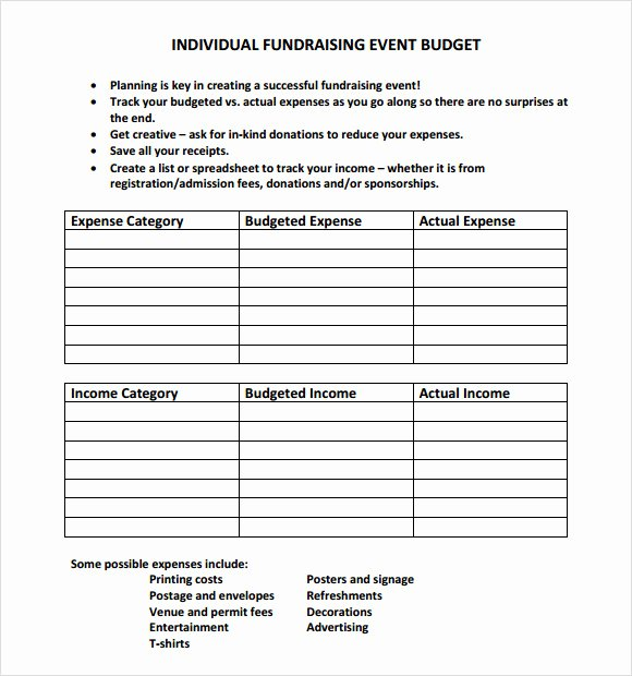 Fundraising Plan Template Excel Unique 9 event Bud Samples