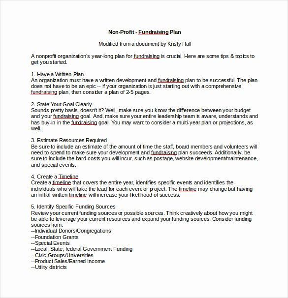 Fundraising Plan Template Free Beautiful 16 Fundraising Plan Templates Free Sample Example