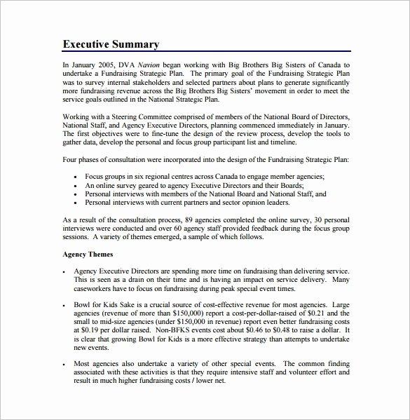 Fundraising Plan Template Free Elegant Fundraising Plan Template – 7 Free Word Pdf Documents