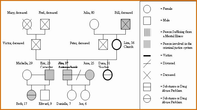 Genogram Template for Mac Beautiful 8 Genogram Generator