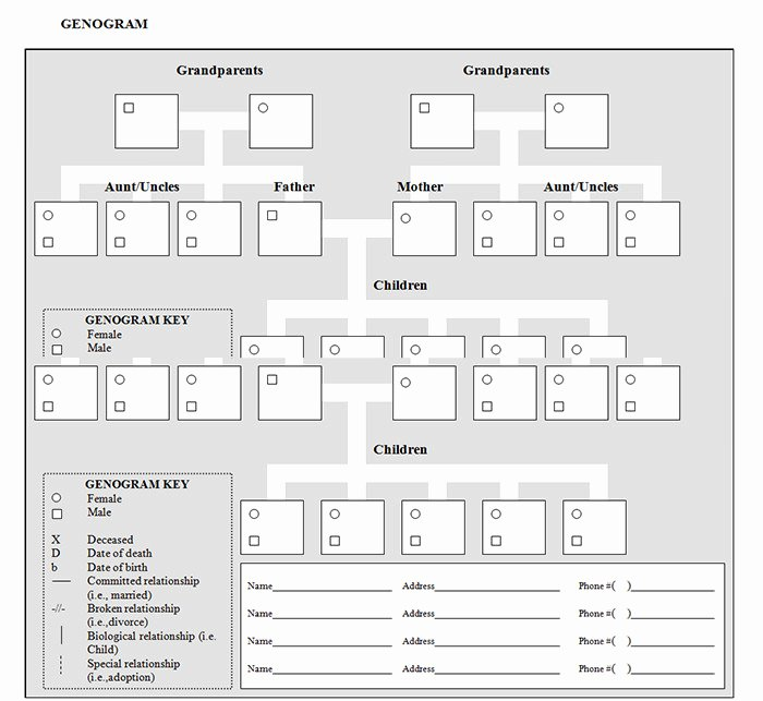 Genogram Template for Mac Fresh Genogram Template for Mac Templates Data