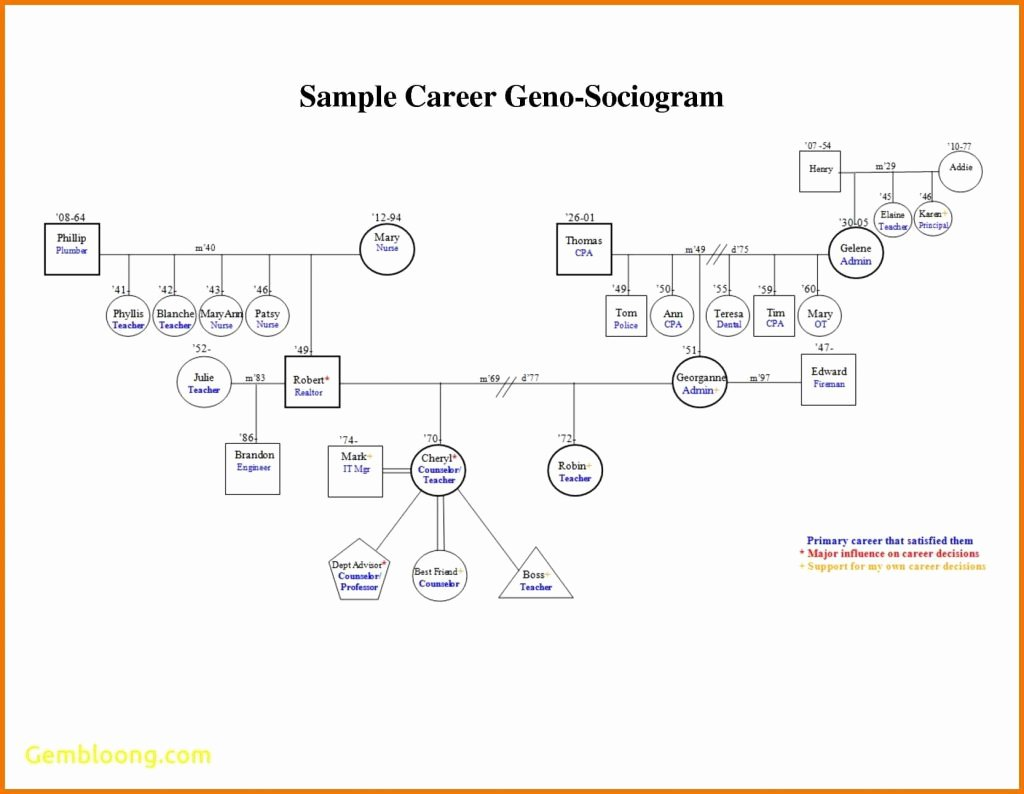Genogram Template for Macs New Family Genogram Example Letter Examples Template for Mac 3