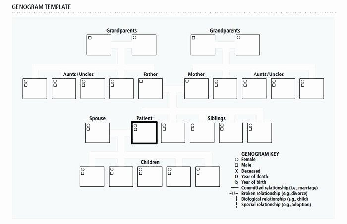 templates free word documents genogram microsoft brochure template for google slides