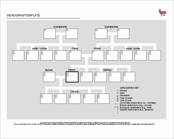 Genogram Template Microsoft Word Luxury 33 Genogram Templates Pdf Doc Psd