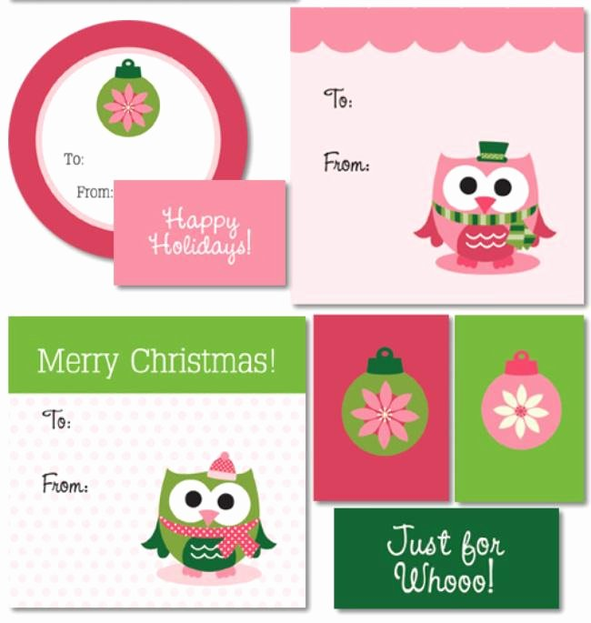 Gift Bag Tag Template Inspirational 17 Free Printable Christmas Gift Tags – Tip Junkie