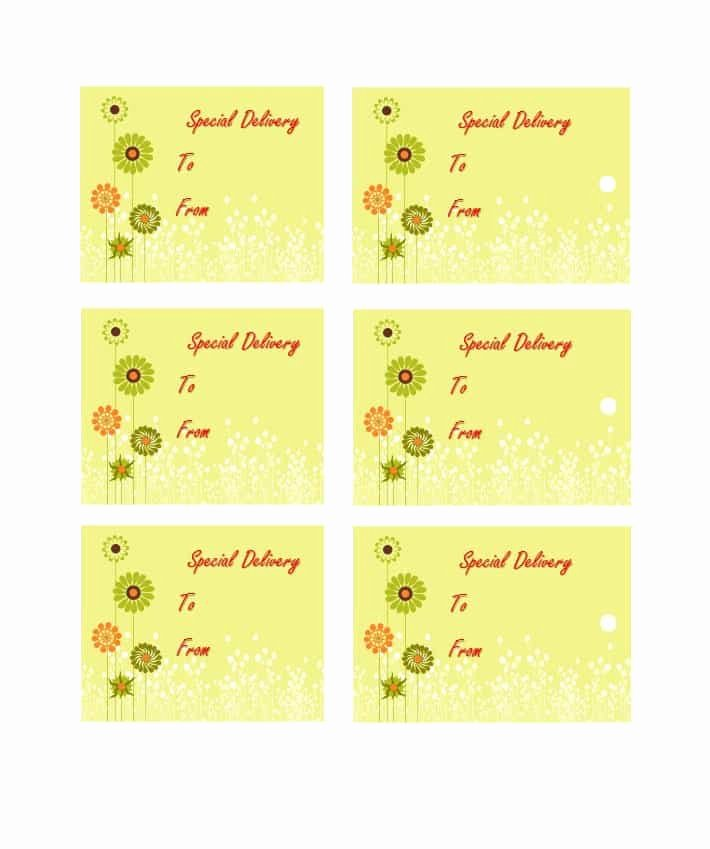 Gift Tag Template Free Beautiful 44 Free Printable Gift Tag Templates Template Lab