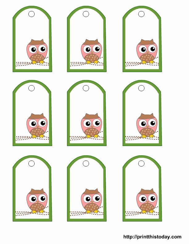 Gift Tag Template Free Unique Free Printable Owl Gift Tags Templates In Pink or Blue or