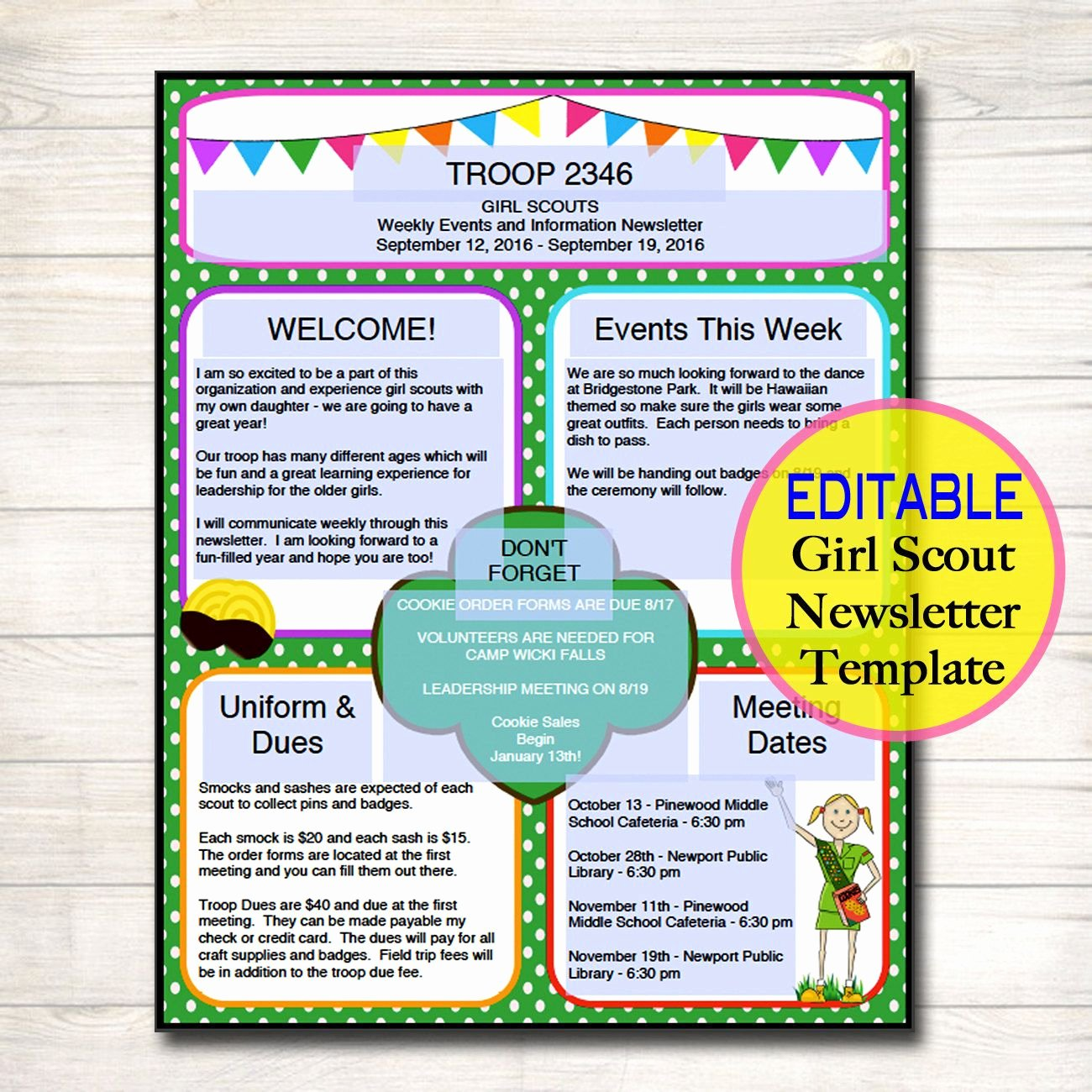 Girl Scout Flyer Template Beautiful Girl Scouts Newsletter Template Instant by