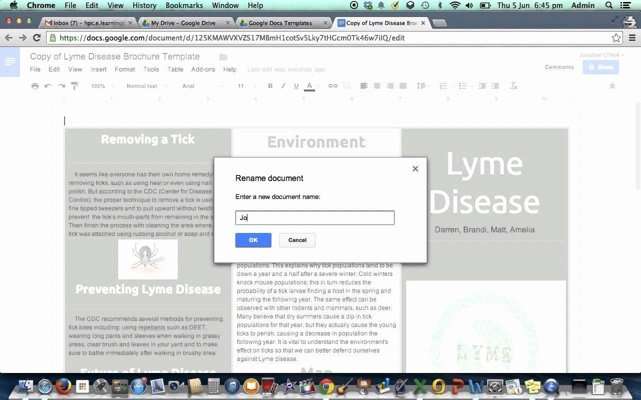 Google Docs Booklet Template Inspirational Brochure Templates Google Docs Beepmunk