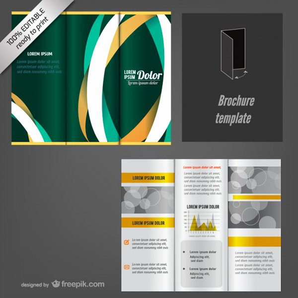 Google Docs Pamphlet Template Fresh Google Docs Brochure Template Lyme Disease 8 Images Of