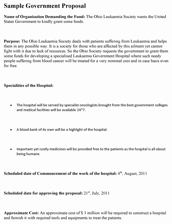 Government Contract Proposal Template Elegant Government Proposal Template