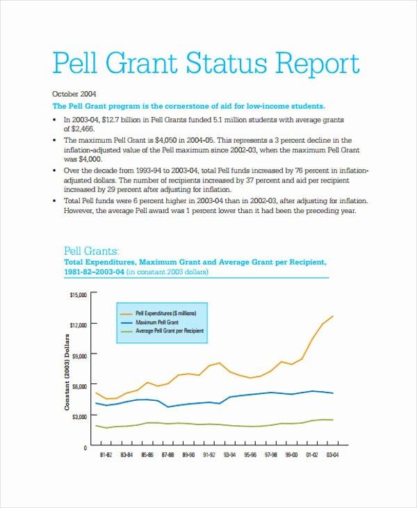 Grant Progress Report Template Elegant 10 Grant Report Templates