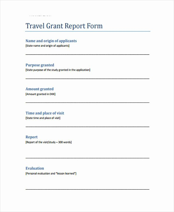 Grant Progress Report Template Lovely 10 Grant Report Templates
