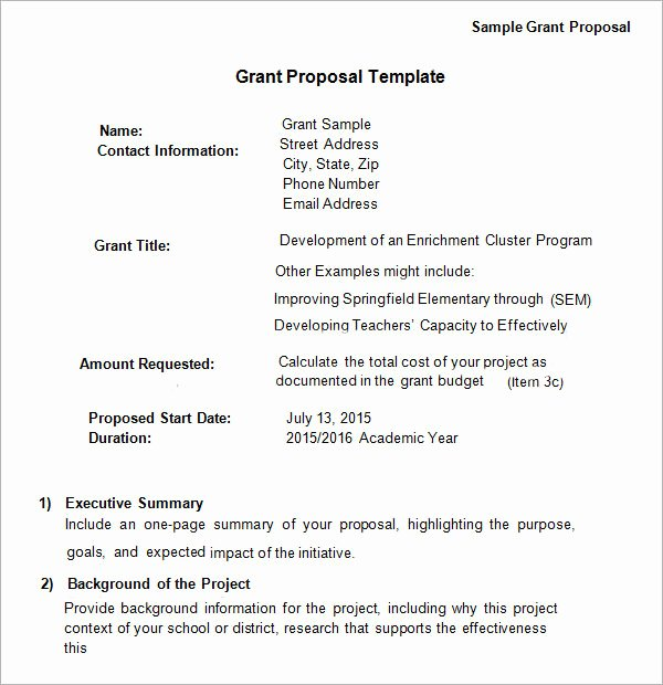 Grant Proposal Template Word Elegant 13 Sample Grant Proposal Templates to Download for Free