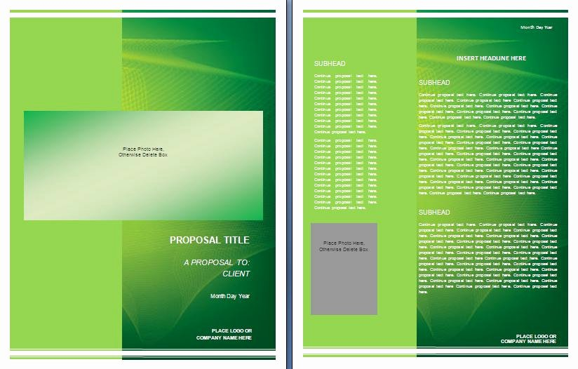 Graphic Design Proposal Template Best Of Graphic Design Proposal Template