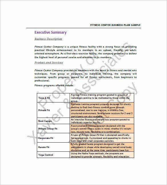 Gym Business Plan Template Unique Gym Business Plan Template 13 Free Sample Example