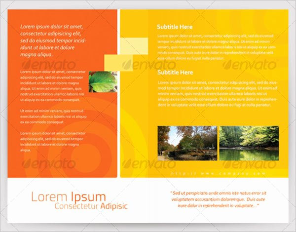 Half Fold Brochure Template Awesome 54 Half Fold Brochure Templates Free Word Psd
