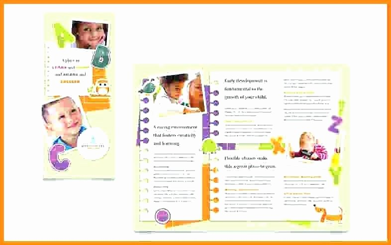 Half Page Brochure Template Inspirational Sample Pamphlet Templates – Emailers