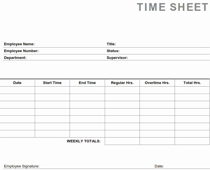 Home Care Timesheet Template Luxury 24 Of Home Care Pca Aide Timesheet Template