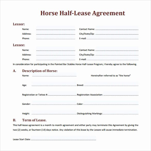 Horse Boarding Agreement Template Inspirational Sample Horse Lease Agreement Staruptalent