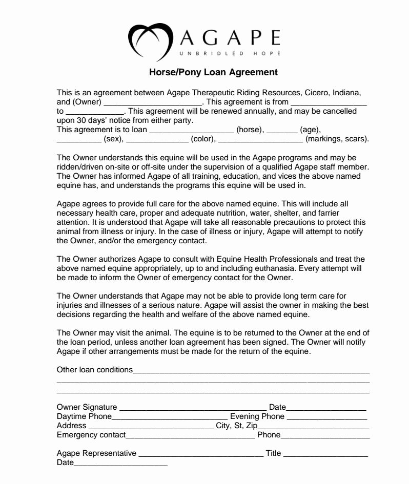 Horse Boarding Agreement Template Luxury Horse Lease Agreement