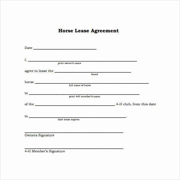 Horse Lease Agreement Template Awesome 10 Horse Lease Agreement Templates