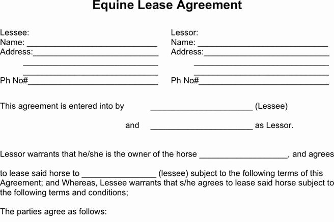 Horse Lease Agreement Template Beautiful Download Horse Lease Agreement for Free Tidytemplates