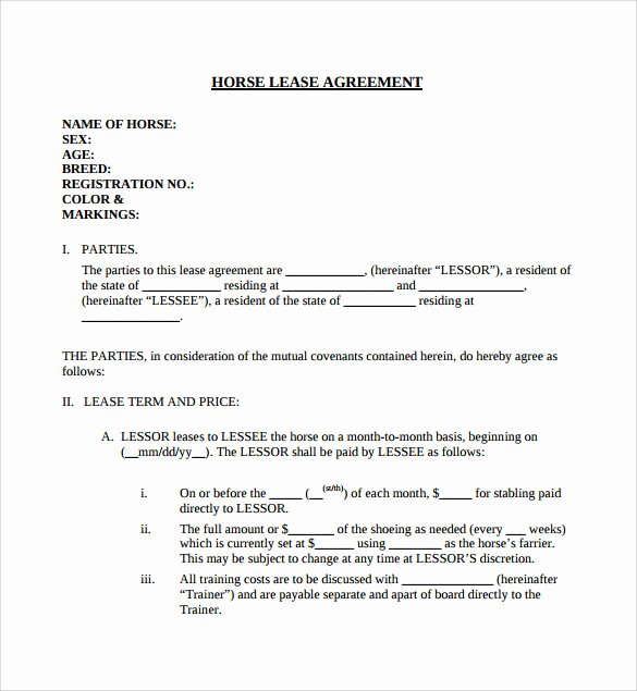 Horse Lease Agreement Template Best Of 7 Horse Lease Agreement Templates – Samples Examples