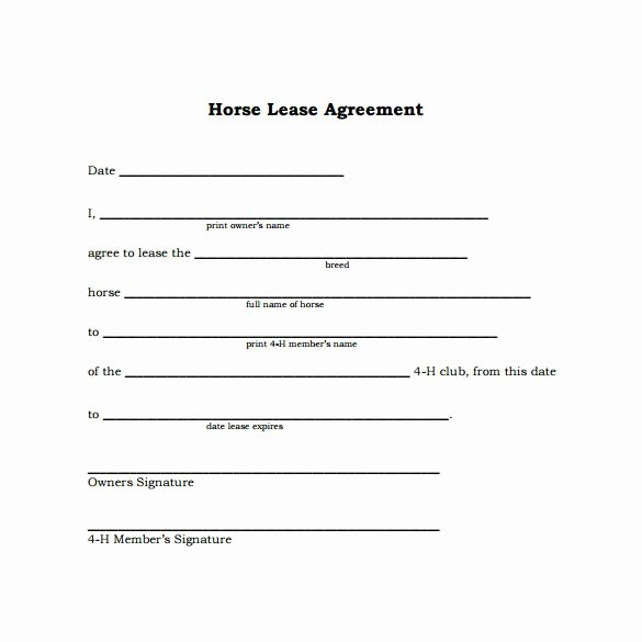 Horse Lease Agreement Template Best Of Simple Lease Agreement
