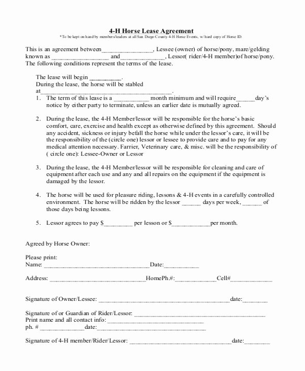 Horse Lease Agreement Template Luxury Sample Horse Lease Agreement Template