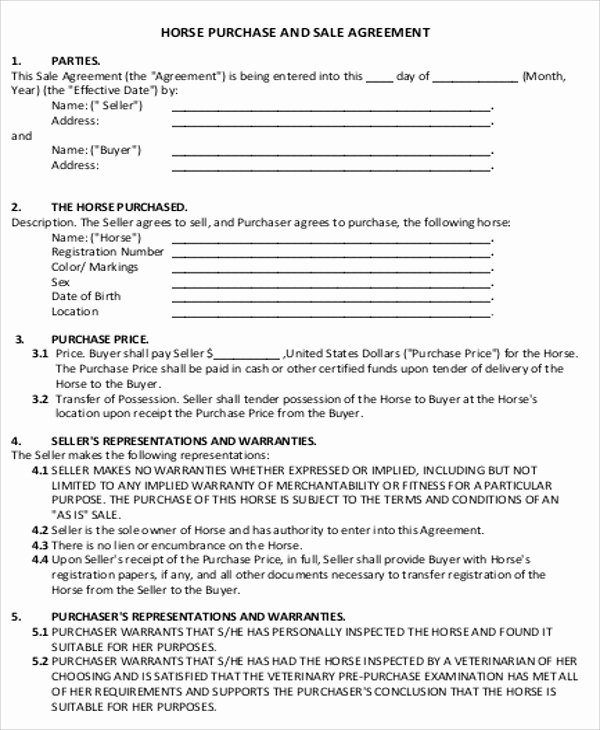 Horse Lease Agreement Template Unique 5 Sample Horse Sales Contracts