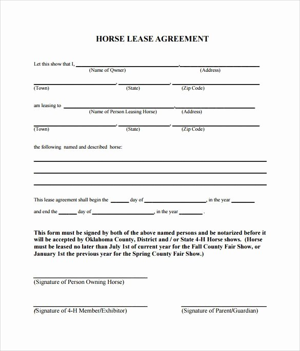 Horse Lease Agreements Template Awesome Horse Lease Agreement