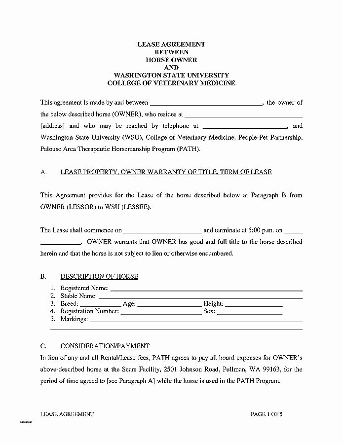 Horse Lease Agreements Template Best Of Horse Lease Agreement Template – Ddmoon