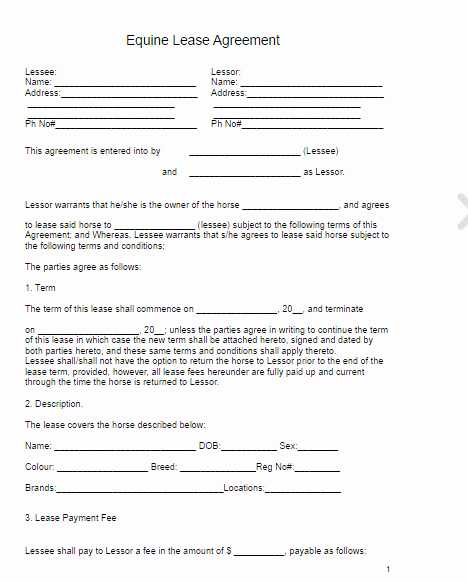 Horse Lease Agreements Template Unique Horse Lease Agreement